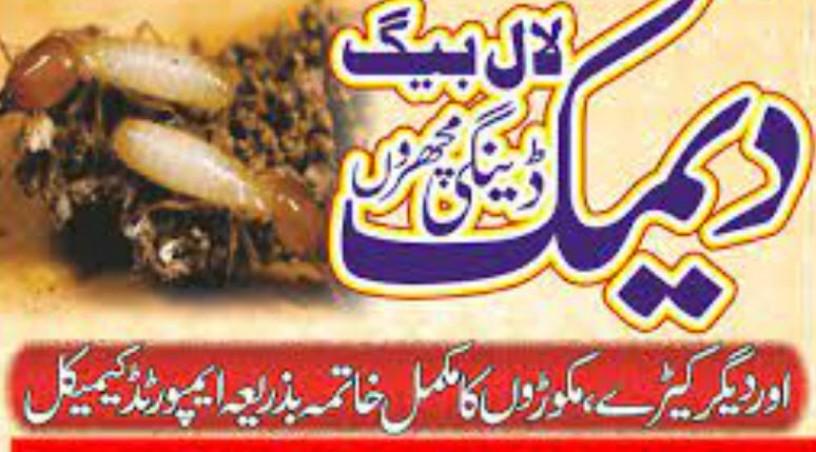 termite-pest-control-service-lahore-big-0