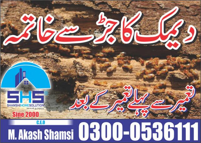 shamsi-home-solution-pest-control-big-1
