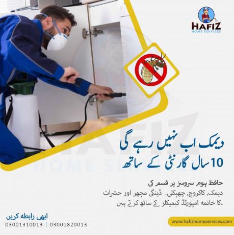 hafiz-home-services-pest-control-big-0