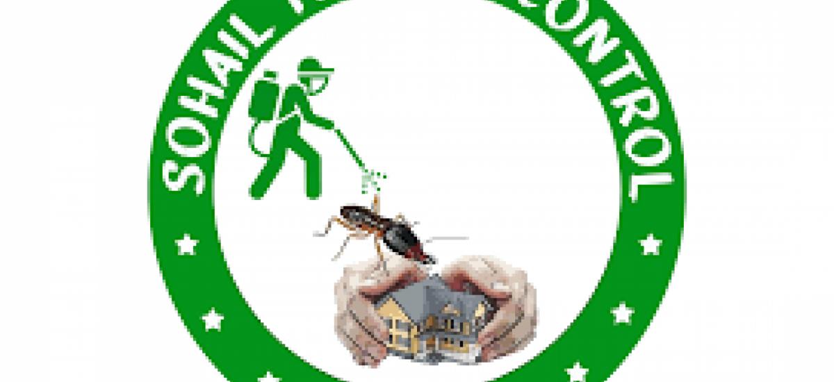 sohail-termite-control-service-lahore-pest-control-small-0