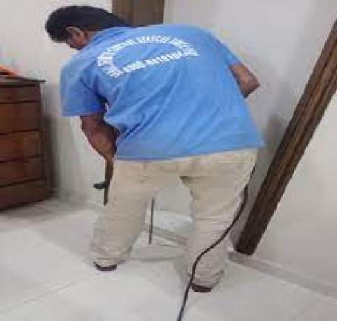 sohail-termite-control-service-lahore-pest-control-big-1