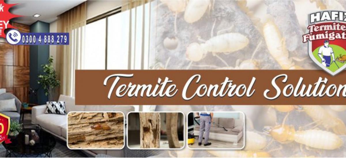 hafiz-pest-control-pest-control-small-2
