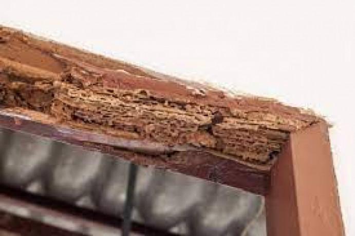 bilal-termite-pest-control-pest-control-big-0