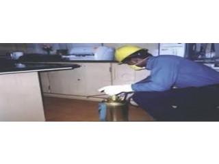 Leads Pest Control Services - Pest Control