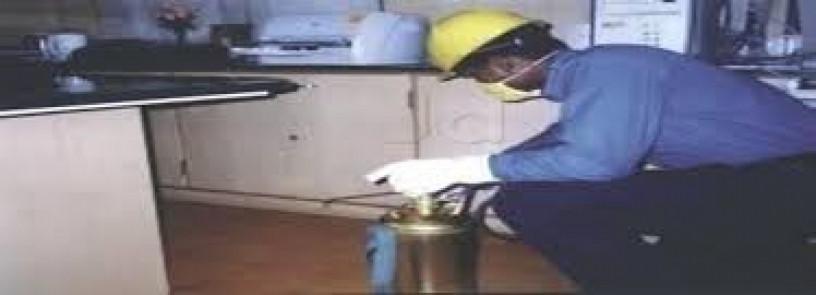 leads-pest-control-services-pest-control-big-0